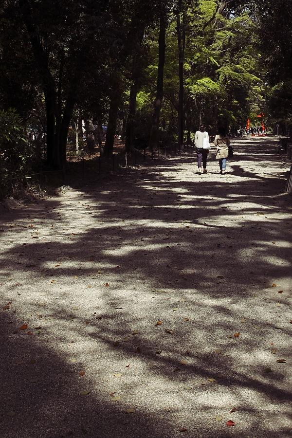 kyoto_datplace